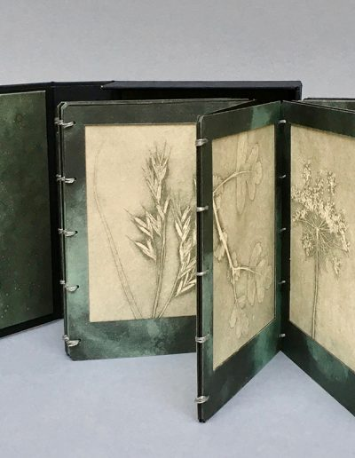 Christine Sloman, Along the Riverbank (10.8.2018), Artist's book consisting of 16 direct press prints of botanical samples in a drop back box.
