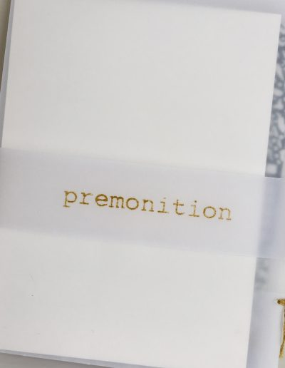 Christine Sloman_premonition_artist books