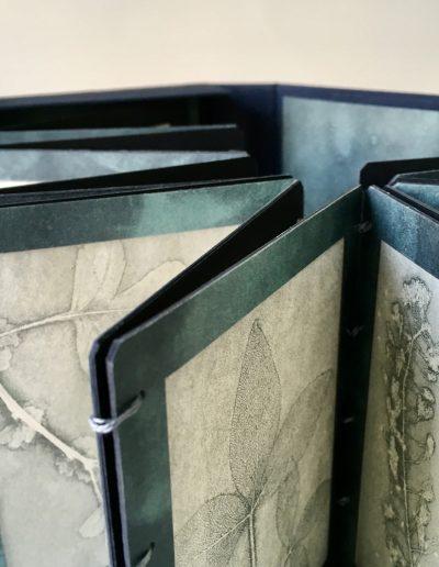 Christine Sloman_Along the Riverbank_artist book comprising of 16 direct press prints of botanical specimens